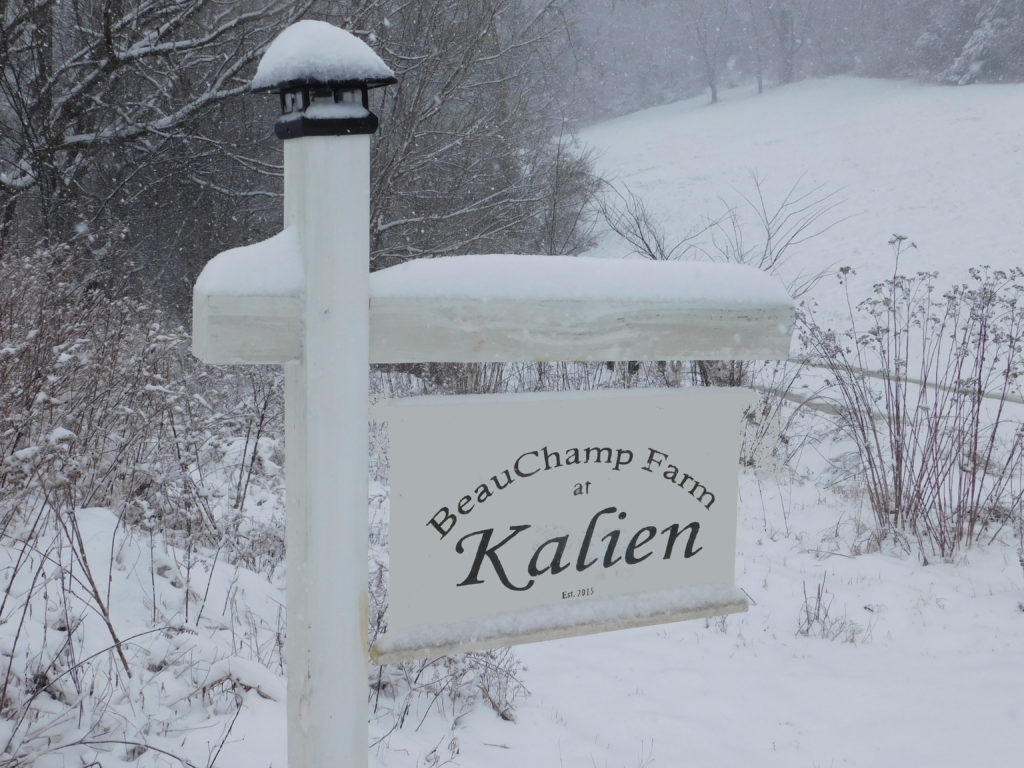 BeauChamp Farm Sign Snow