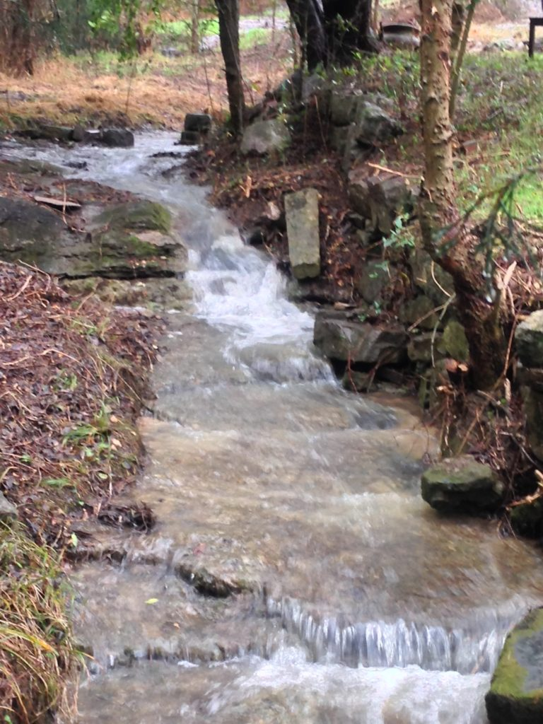 Remy's Creek at Kalien